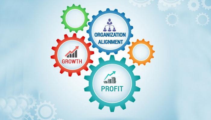 Organization Alignment
