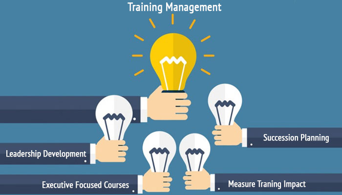 Bridge middle skill gap with training management system