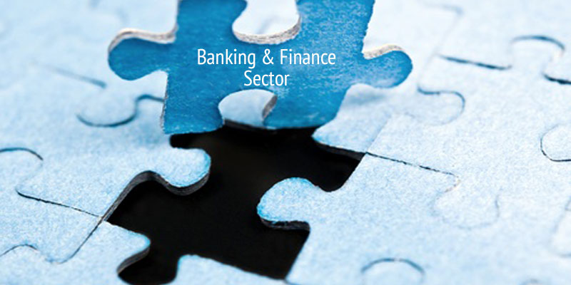 Performance Management for Banking and Financial Sector