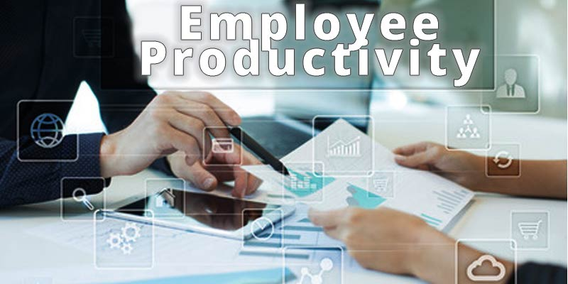 Employee Productivity Improvement: Managing Business Performance